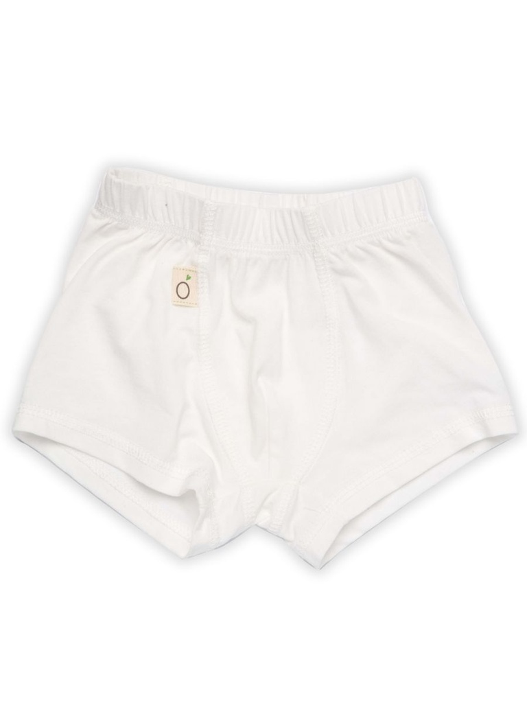 Bode Boxer Shorts in Tencel